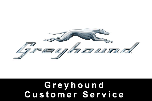 Greyhound Custome Service Phone Canada